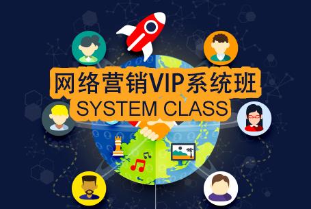 网络营销VIP系统班