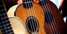 流行弦乐VS传统弦乐,是不是感觉很高大上?你知道多少? 想了解更多吗?听我来给一 一道来...:-)