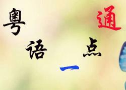 粤语一点通课程